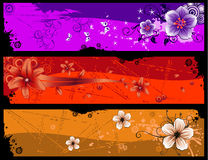 Flower banner vector Stock Photos