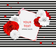 Flower banner on the white black striped background. Red roses, white mallow, rudbeckia flowers and square for text Stock Images