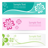 Flower banners Stock Photos