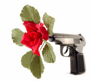 Flower in the barrel of the gun Stock Photography