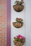 Flower basket. Decorative flower basket on the wall Stock Images