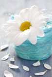 Flower in a basket Royalty Free Stock Photo