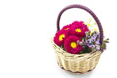 Flower basket. This is a picture of the flower basket made by such as wild chrysanthemum and aster Royalty Free Stock Image