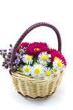 Flower basket. This is a picture of the flower basket made by such as wild chrysanthemum and aster Royalty Free Stock Photography