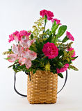 Flower Basket Stock Image