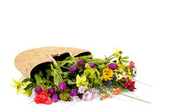 Flower basket. Basket filled with flowers on reflective surface, white background, studio shot Royalty Free Stock Photography