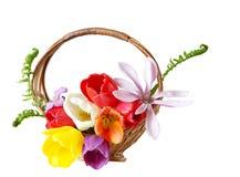 Flower Basket Stock Photos