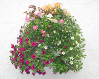 Flower Basket Against a Stucco Wall Royalty Free Stock Photography