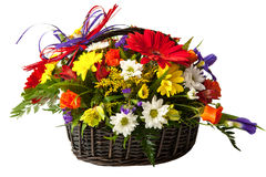 Flower in a basket. Royalty Free Stock Image