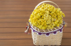 Flower Basket. A basket containing helichrysum on wooden table Stock Images
