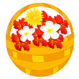 Flower in basket. Basket full flower on white background is insulated Stock Photography