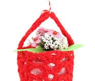 Flower in a basket. Stock Photos