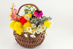 Flower basket made of wicker on white background Stock Photos