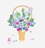 Flower in basket Stock Photos