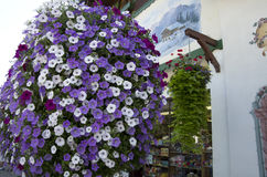 Flower basket by old house Stock Photos