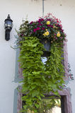 Flower basket by old house Royalty Free Stock Photos