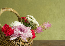 Flower in basket Stock Image