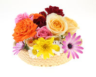 Flower basket Stock Image