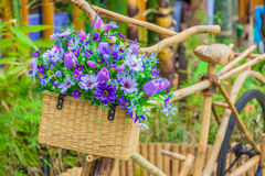 Flower basket Stock Photography