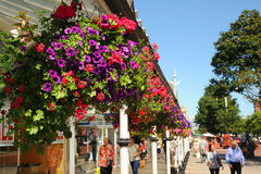 Flower baskets on main street Southport floral town Merseyside. Royalty Free Stock Photos