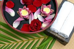 Flower bath. Flower display from a Thai Spa Stock Photography