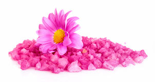 Flower and bath salt Stock Photo