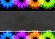 Flower Beautiful Background Stock Images