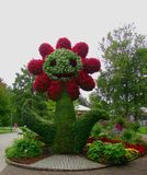 Flower. Beautiful Flower of the Garden in Mainau stock image