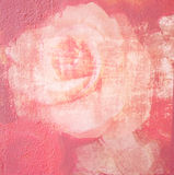 Flower beautiful rose, art paint illustration for background Royalty Free Stock Photo