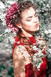 Flower, Beauty, Human Hair Color, Lady stock photography
