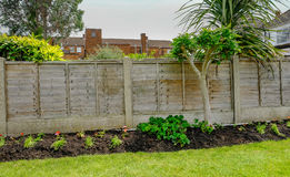 Flower bed in the back-garden with a fence behind the plants. Royalty Free Stock Photos