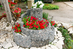 A flower bed of blooming petunias for the stones. Design solution for the design of flower beds. Royalty Free Stock Images