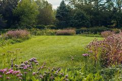 Flower bed with bright colourful flowers in botanical garden royalty free stock photography