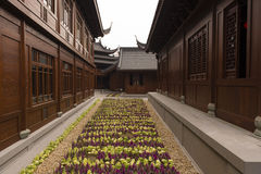 Flower Bed in Buddhist Temple. A flower bed in a passageway in a Buddhist Temple compound in Shanghai Royalty Free Stock Image