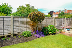 Flower bed with camelia tree, flowers and a fence in the back ga Stock Photo