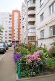 Flower bed in a city court yard Royalty Free Stock Images