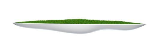 Flower-bed com grama verde Fotografia de Stock