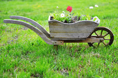 Flower bed Stock Photos