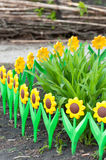 Flower bed with  decorative fence Royalty Free Stock Photos