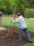 Flower-bed designing. Gardener designing flower-bed using wooden caliper royalty free stock photography
