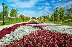 Flower bed in formal garden. A beautiful flower bed in a formal garden. Moscow, the State Museum Reserve Park Tsaritsyno. Summer Royalty Free Stock Image