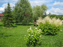 A flower bed in the garden. Royalty Free Stock Photo