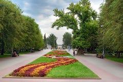 Flower bed and Memorial poplar tree on Square of Fallen Fighters. Volgograd. Volgograd, Russia - August 31, 2016: Flower bed and Memorial poplar tree on Square stock photo