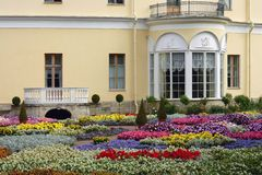 Flower bed near the Grand Pavlovsk Palace Royalty Free Stock Image