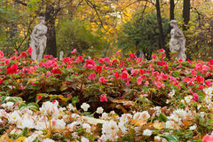 Flower bed in the park Royalty Free Stock Images