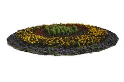 A flower bed in the Park insulator Royalty Free Stock Photos