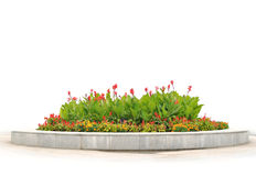 The flower-bed with red and yellow flowers Stock Images
