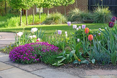 Flower bed with spring flowers Royalty Free Stock Photos