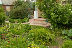 Flower bed and vegetable beds in the summer garden Stock Image