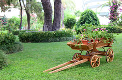 A flower bed of in a wooden a cart Stock Images